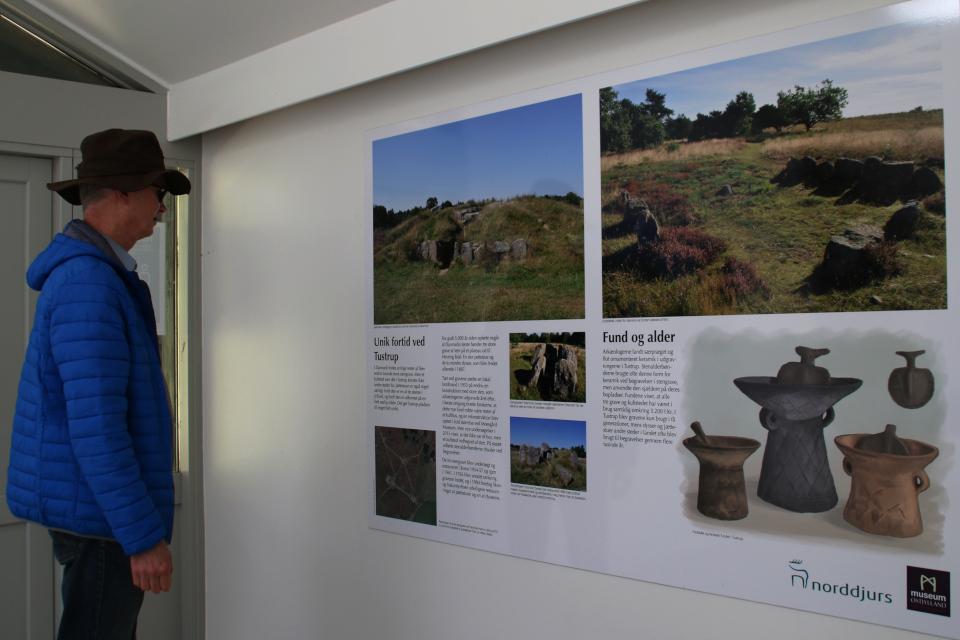 Выставка в музее про находки, сделанные во время археологических раскопок