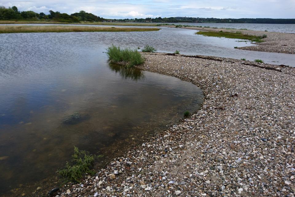 Линии берега между бухтами. Остров чаек /Mågeøen, Ugelbølle (Rønde), Дания