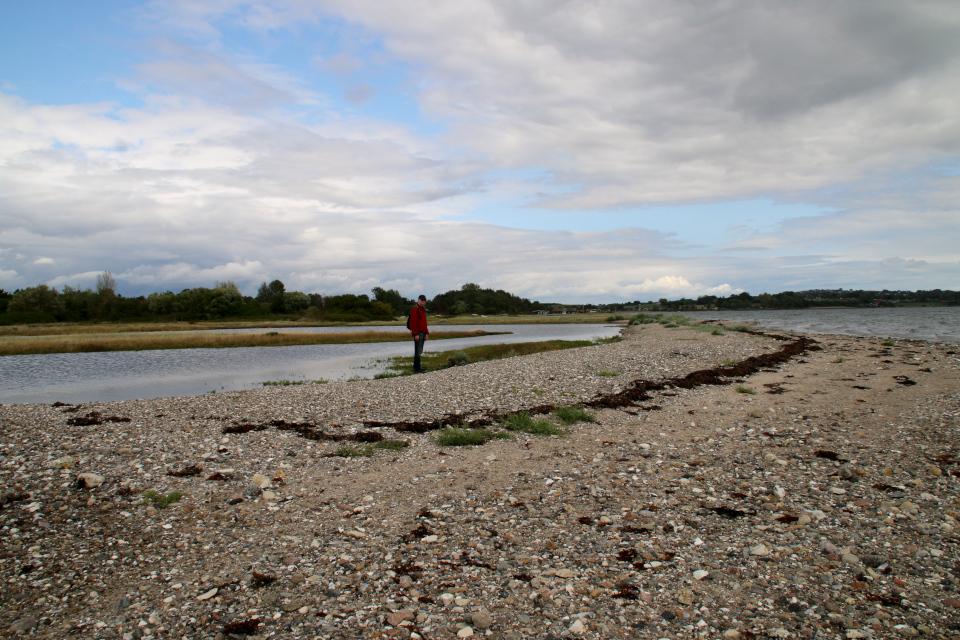 Береговая линия мыса, образуемая волнами. Остров чаек / Mågeøen,, Дания