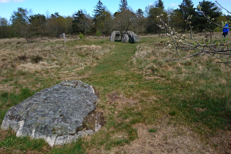 Огромный камень, недалеко от разрушенного дольмена
