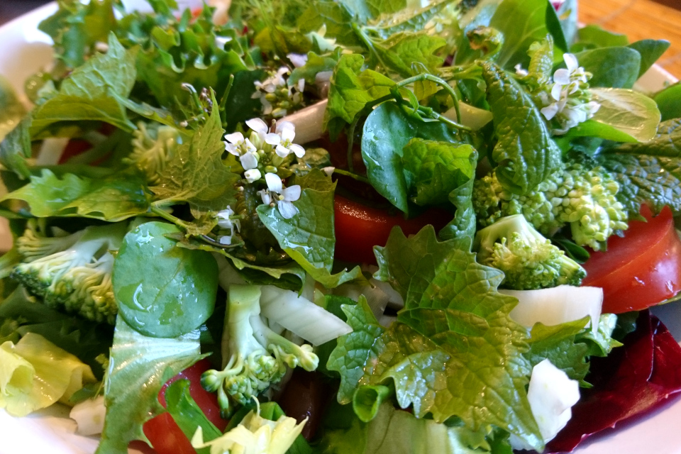 Салат с листьями и цветами чесночницы
