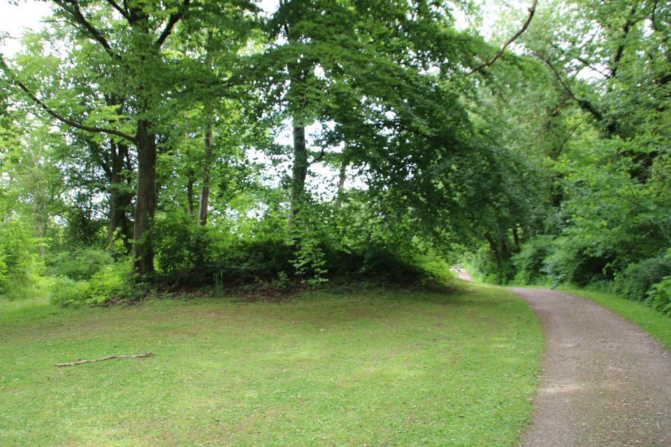Заросший деревьями курган в королевском парке Марселисборг