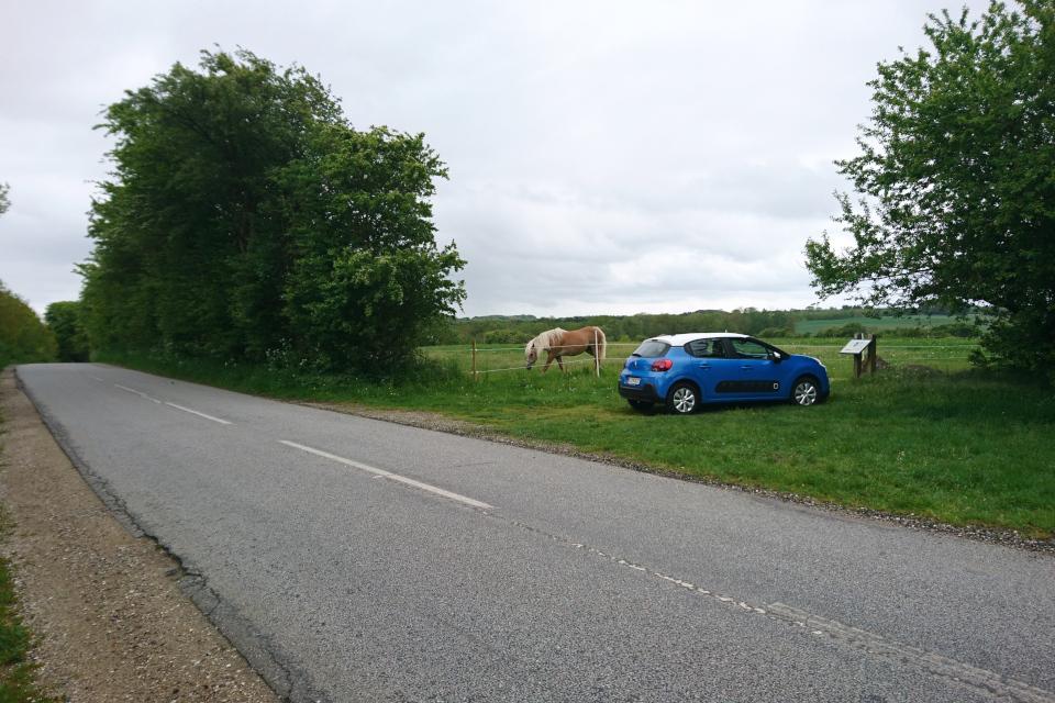 Парковка возле дороги, откуда проложена тропинка к дольмену