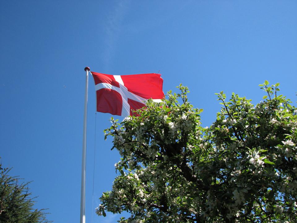 Dannebrog. Сад Йенс Кёэ (Jens Kjøge), Ørnegårdsvej 17, Хойбьерг, Дания. 26 мая 2013