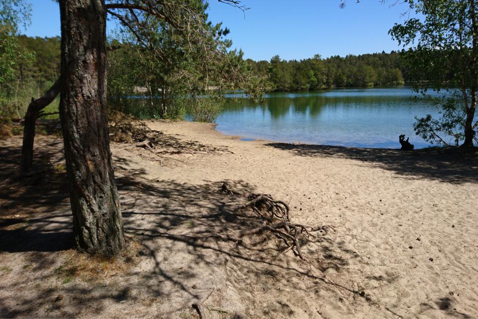 На песчаном берегу озера Шобье (дат. Schoubyes Sø)