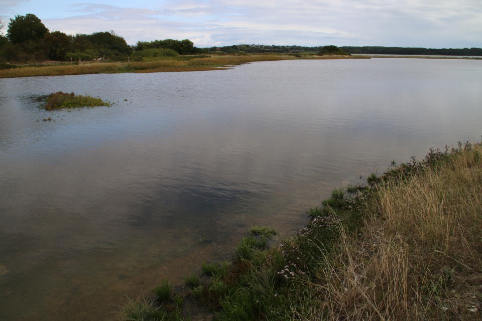 Маленький островок посреди морского озера