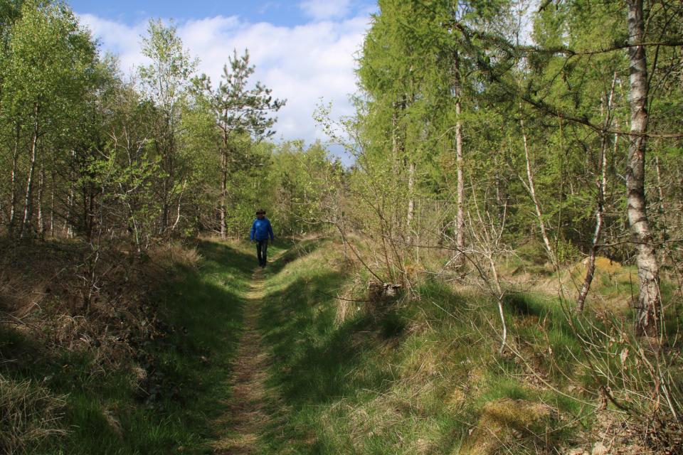 По дорожке, протоптанной в доисторические времена (hulvej), Дания
