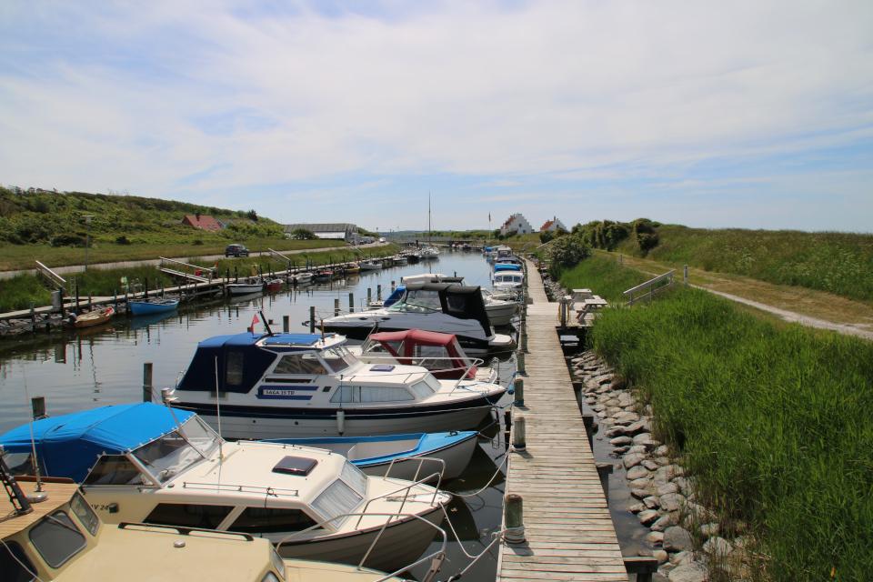 Деревянные мостики вдоль канала. Фото 3 июн. 2020, г. Лёгстёр / Løgstør, Дания