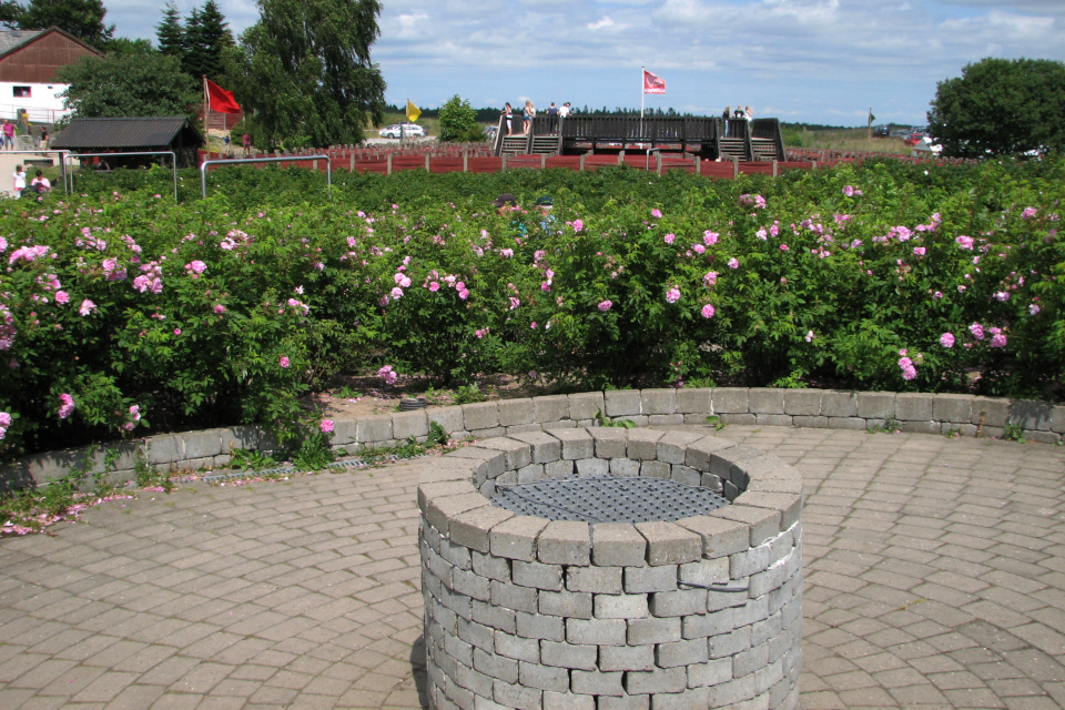 Колодец посреди лабиринта из роз, парк Лабиринтия, Дания