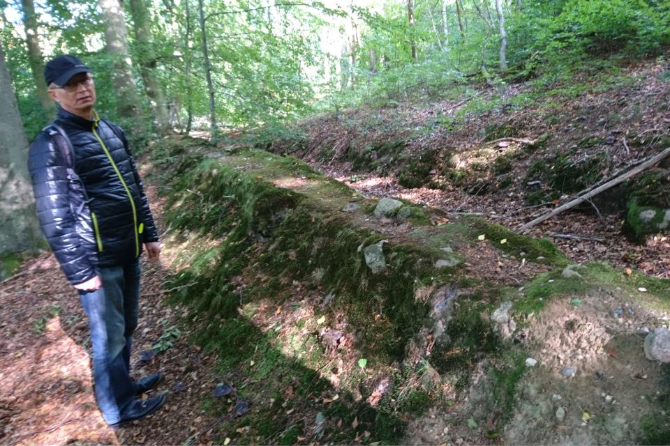 Остатки каменной траншеи (дат. stendige) в лесу Марселисборг