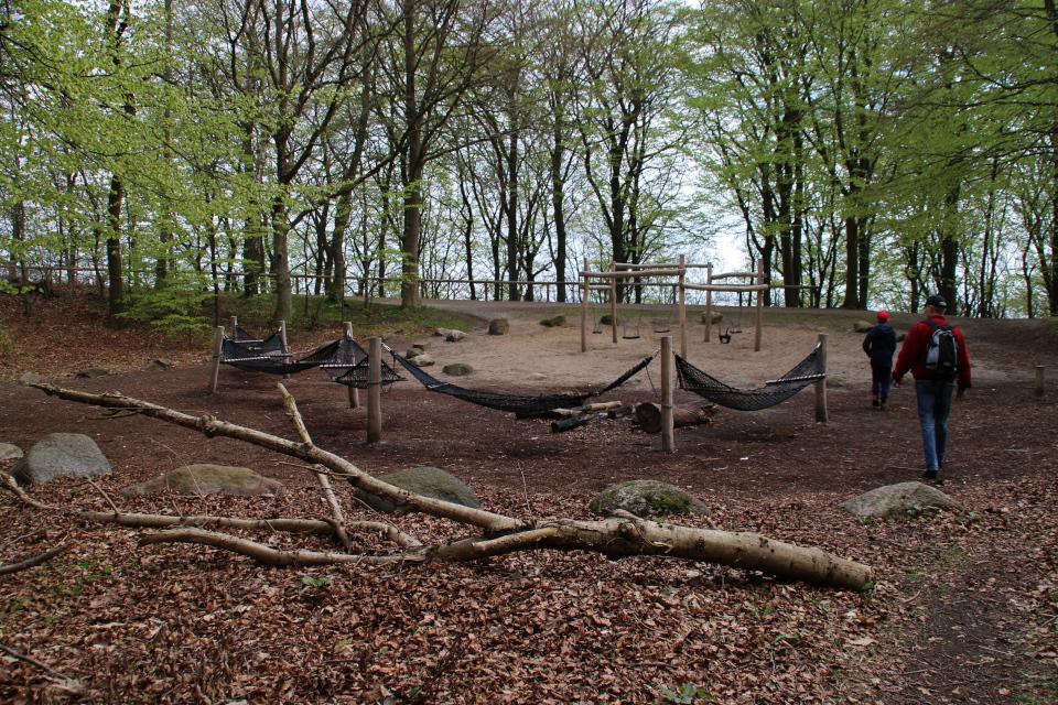 Детская площадка в буковом лесу Марселисборг