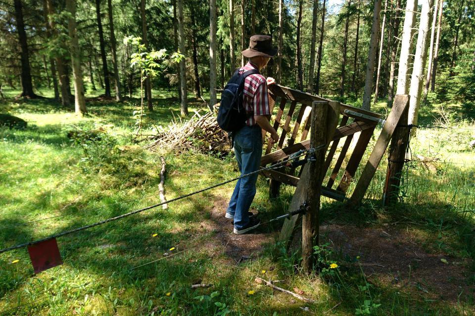 Ограда с калиткой у входа на территорию бывшего летного поля