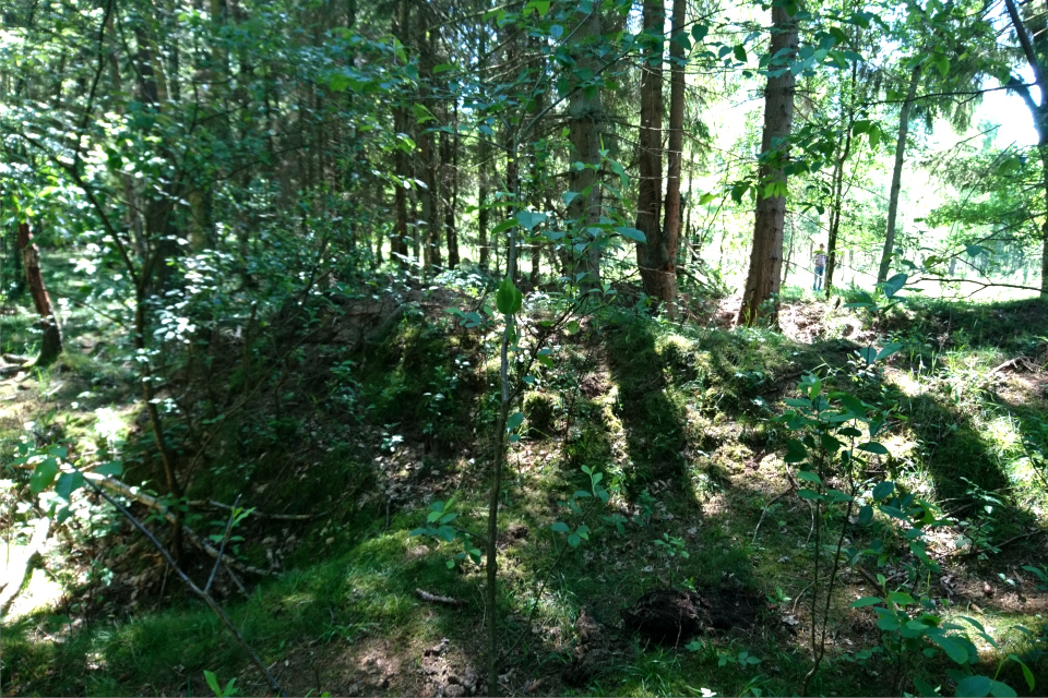 Глубокие ямы, вырытые в лесу в конце второй мировой войны