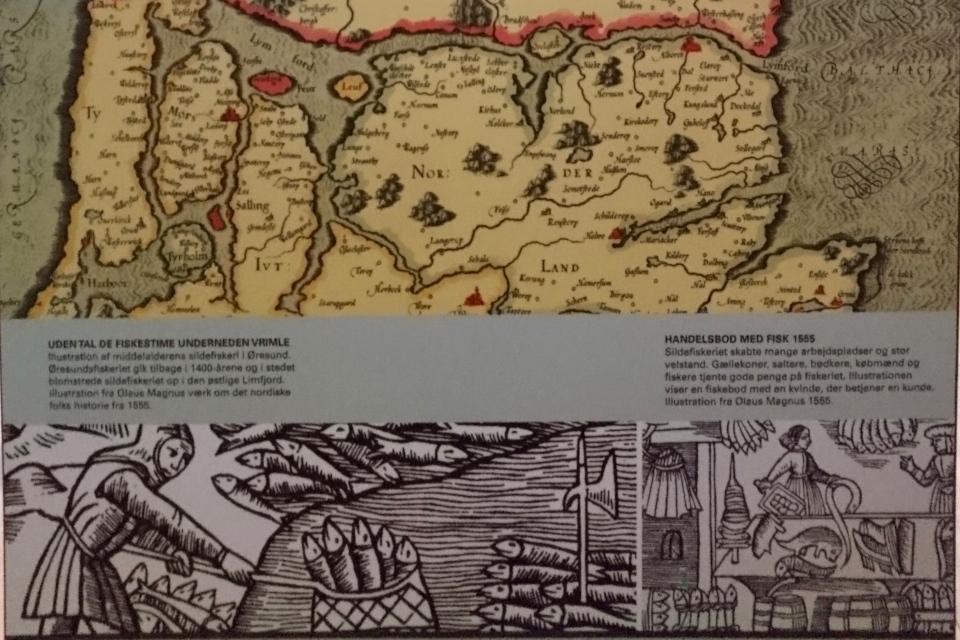 Промысел сельди Лимфьорд, иллюстрации 1555 года