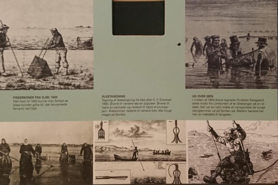 Рыбалка на угря в 18 столетии, Лимфьорд
