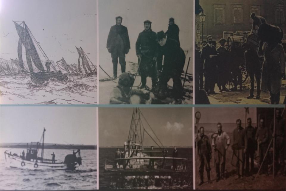 Промысел устриц в Дании, исторические фото