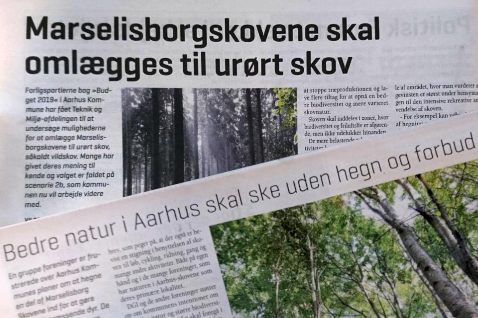 Статья в газете Landbrug Fyn про лес Марселисборг