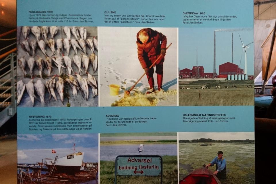 Старые фотографии, демонстрирующие экологическую катастрофу