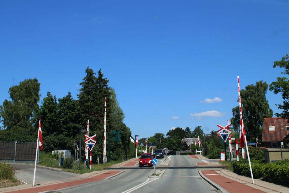 Датские флаги вдоль дороги, проходящей через железнодорожный переезд
