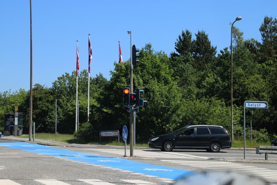 Три датских флага возле автобусной остановки и велосипедной дорожки