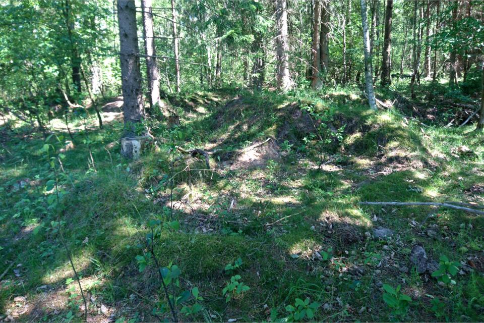 Ямы и траншеи в лесу возле бывшего летного поля, Дания