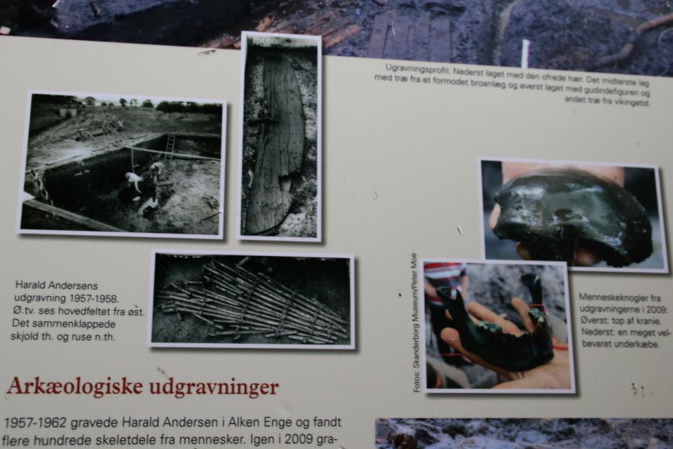 Фотографии археологических раскопок на информационном щиту