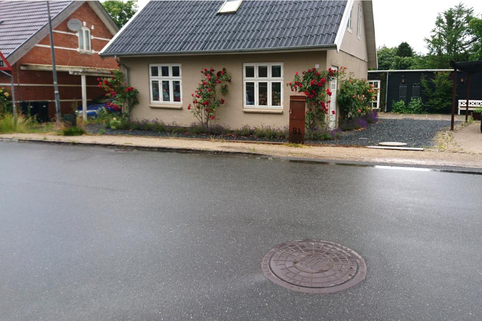 Дома с розами. Фото 20 июн. 2020, г. Алкен / Alken, Дания