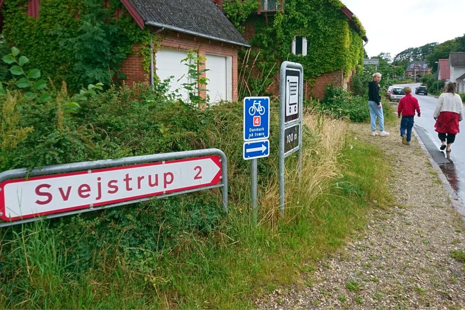 Местные жители по пути в магазин. Фото 20 июн. 2020, г. Алкен / Alken, Дания