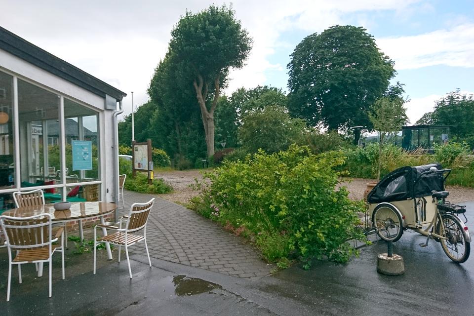 Велосипед с прицепом возле магазинчика. Фото 30 июн. 2020, г. Алкен / Alken, Дания.
