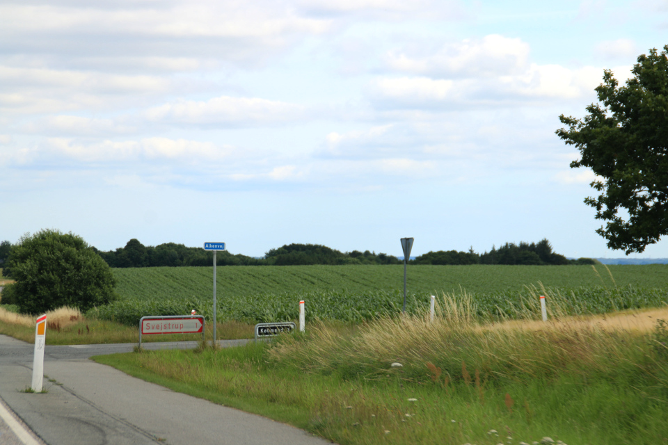 дорожный указатель голубого цвета на улицу Алкенвей (дат. Alkenvej, vej - дорога)