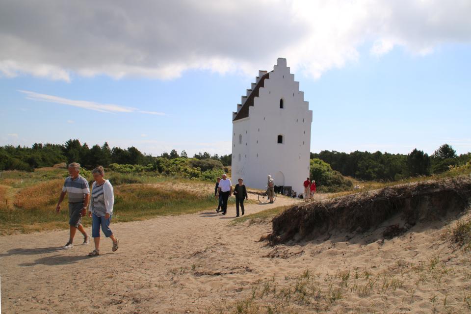 Башня церкви, засыпанной песком. На песках прорастает Колосняк песчаный