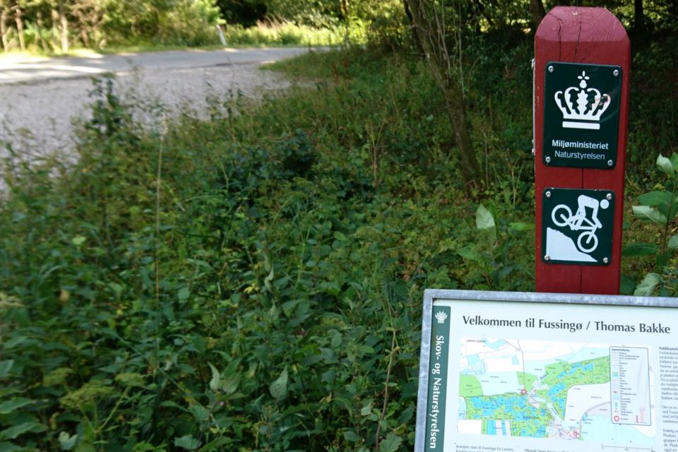 Табличка с велосипедными и пешеходными маршрутами на лесной опушке