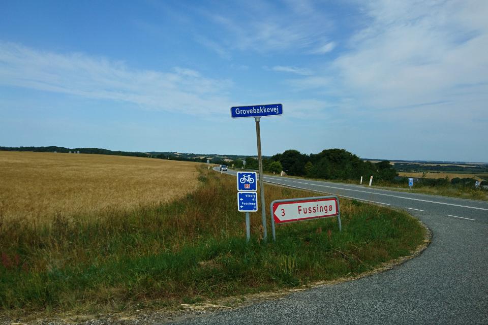 Дорога с указателем велосипедного маршрута