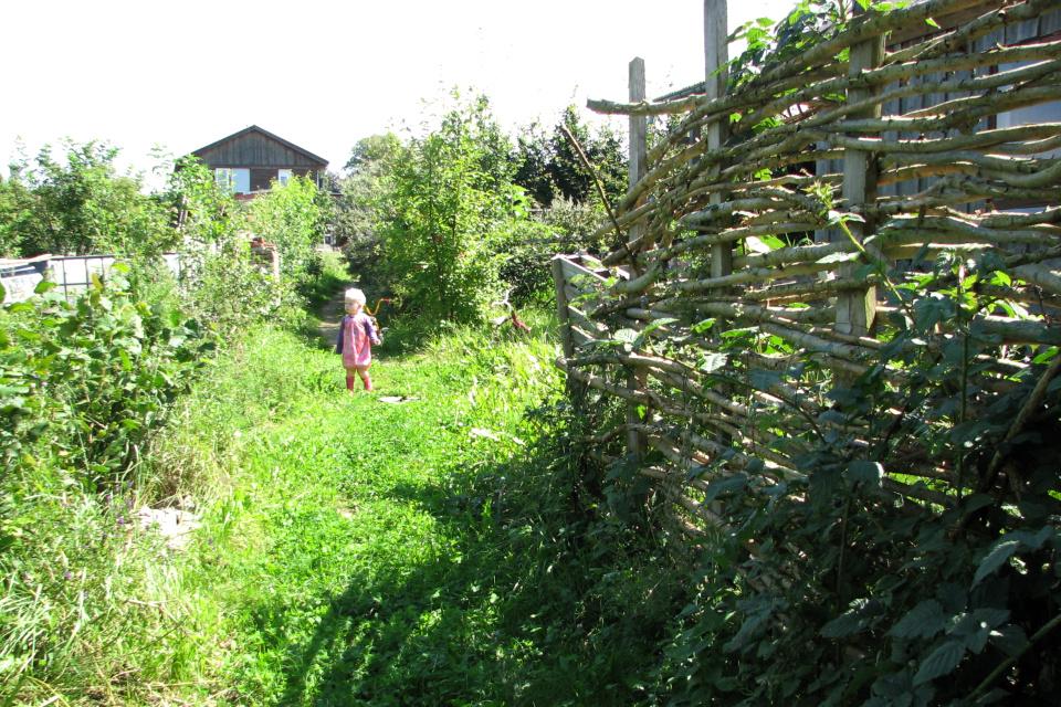 Плетеная ограда из веток деревьев