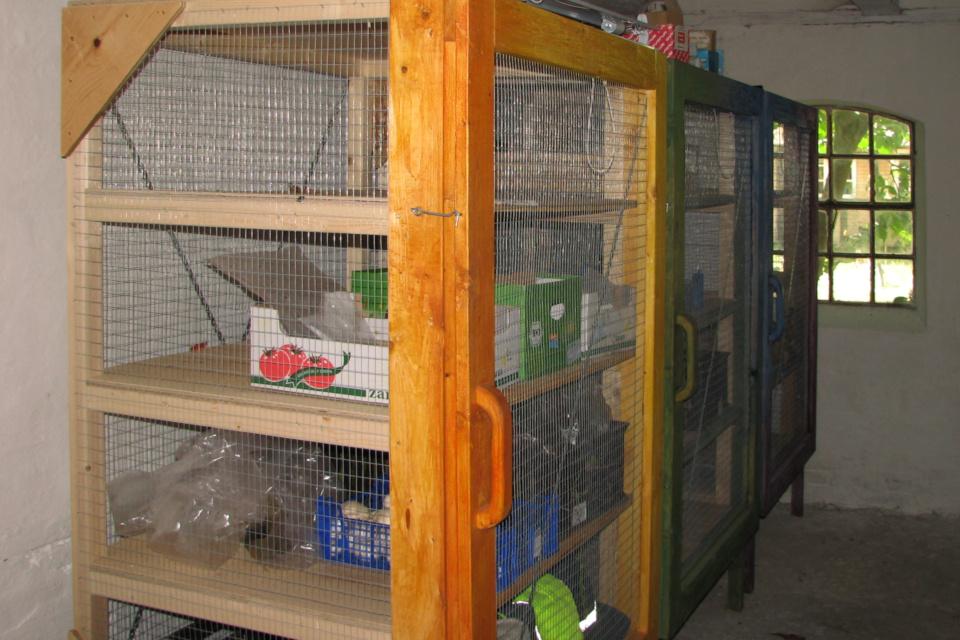 Шкаф-клетка для хранения продуктов питания