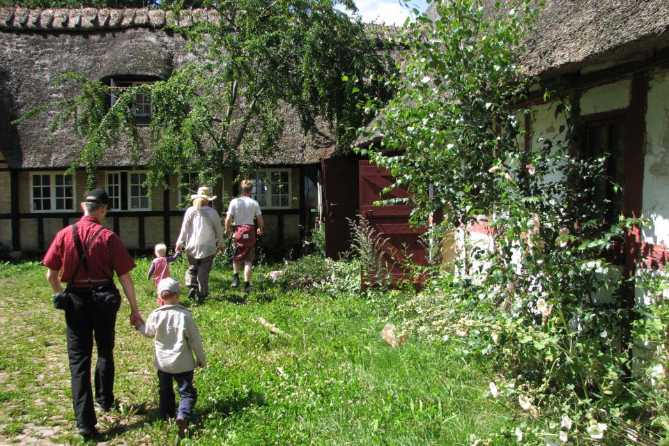 Жилые построй бывших хозяев двора