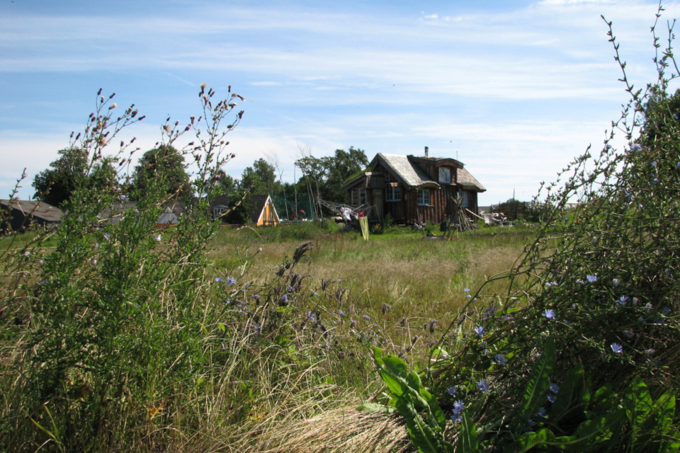 Вид на самодостаточную деревню со стороны парковки, на которой растет цикорий