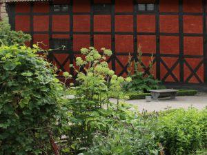 Аптекарские огороды в Старом Городе