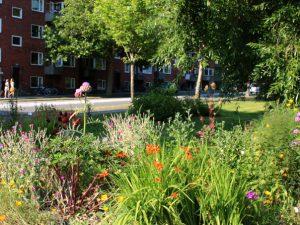 Городские огороды Greenshare
