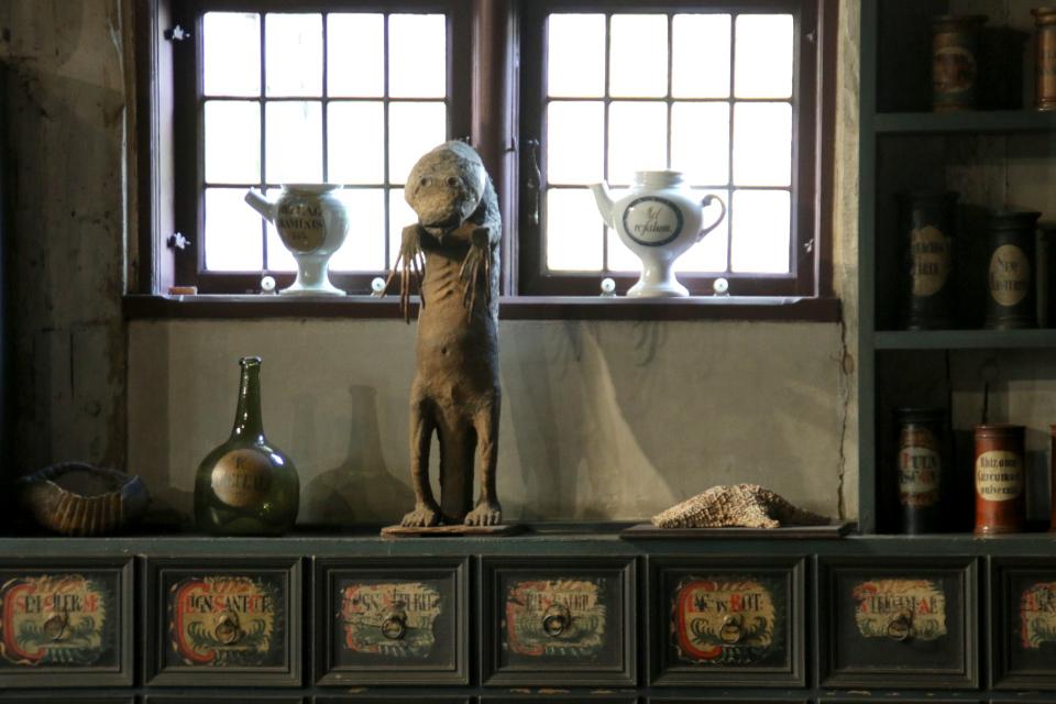 """""""Морская обезьяна"""" в старой аптеке. Фото 30 дек. 2019, музей Старый Город"""