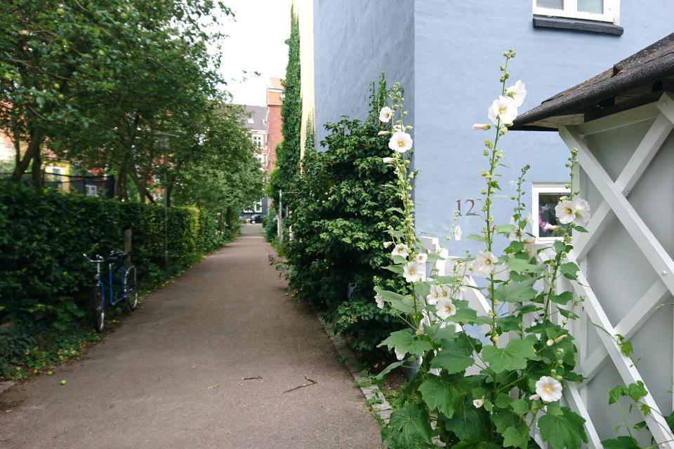Улочка любви. Фото 29 июл. 2020, Орхус / Aarhus, Дания