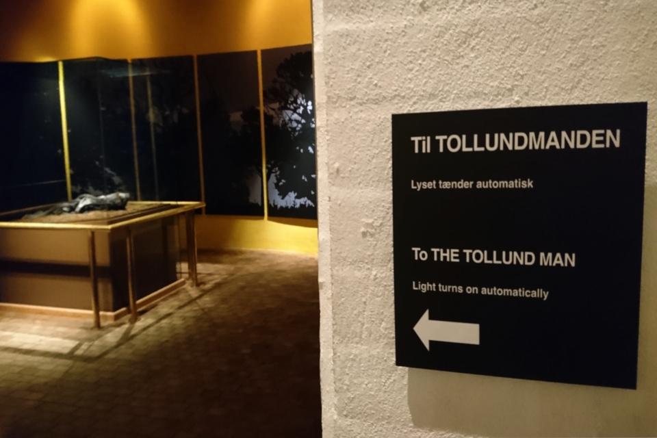 У входа на экспозицию с человеком из Толлунда (Tollundmanden)