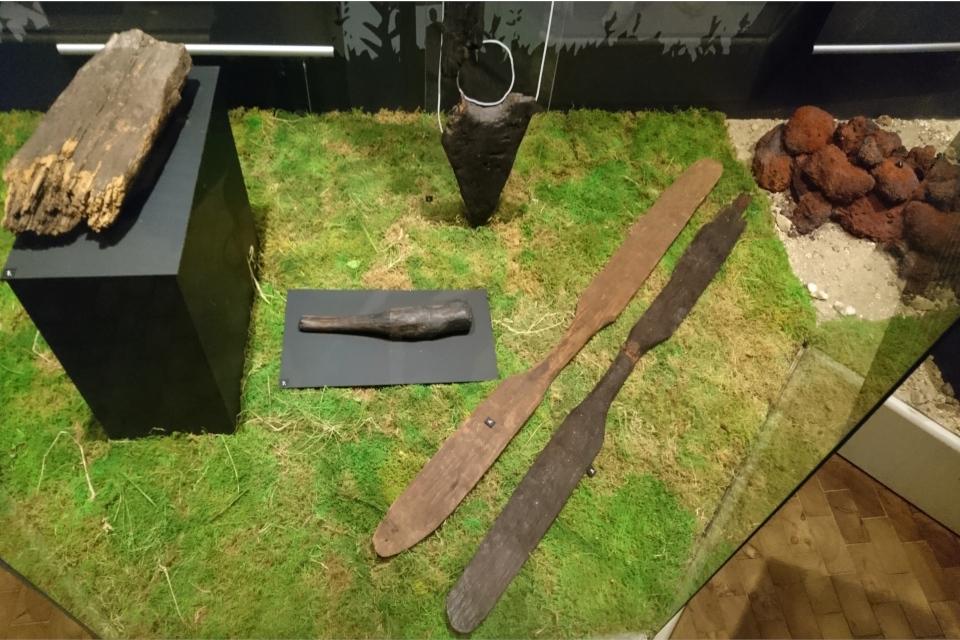 Находки, сделанные в болоте Бёллинг / Bølling sø