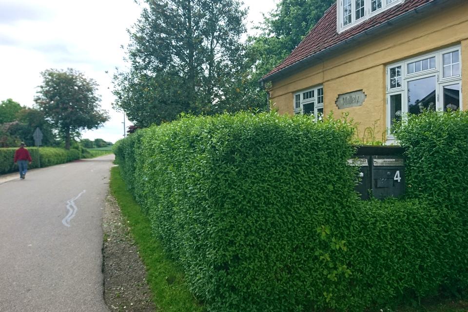 Старый дом под названием Мøllely. Граубалле / Grauballe, Дания