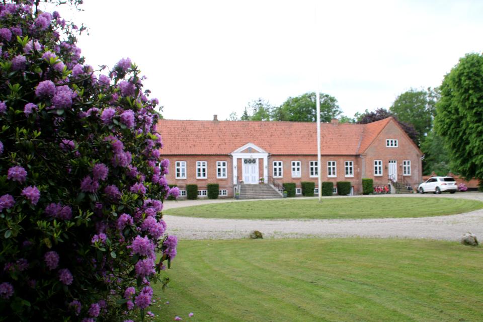 Двор усадьбы Граубалле (Grauballegård). Фото 7 июн. 2020, Дания