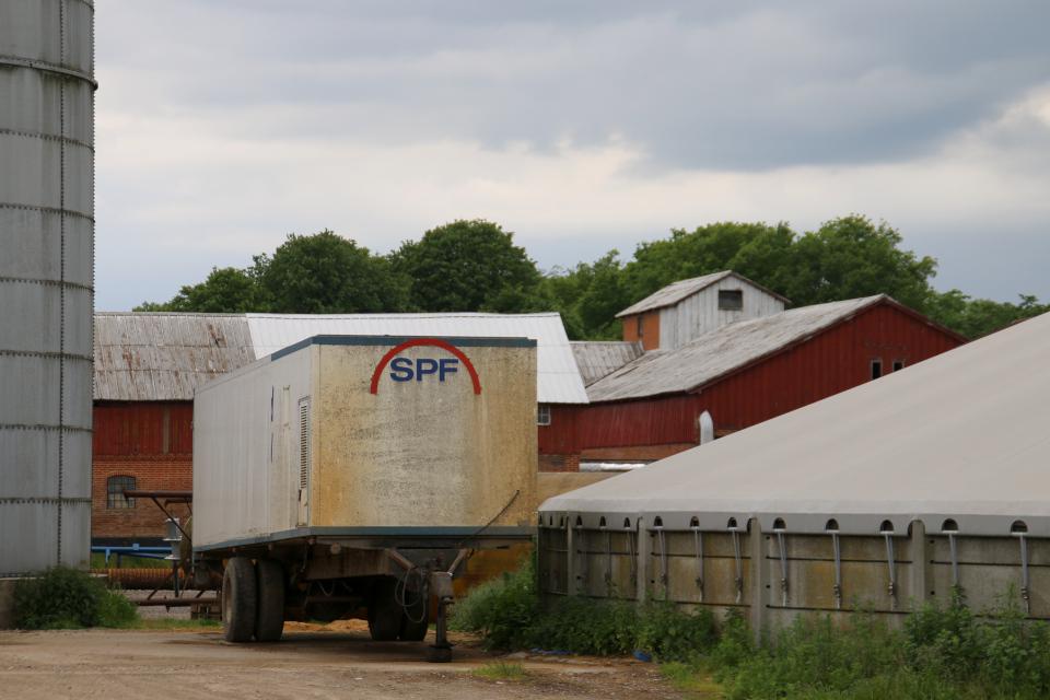 Очистные сооружения свинокомплекса и машина транспортировки свиней