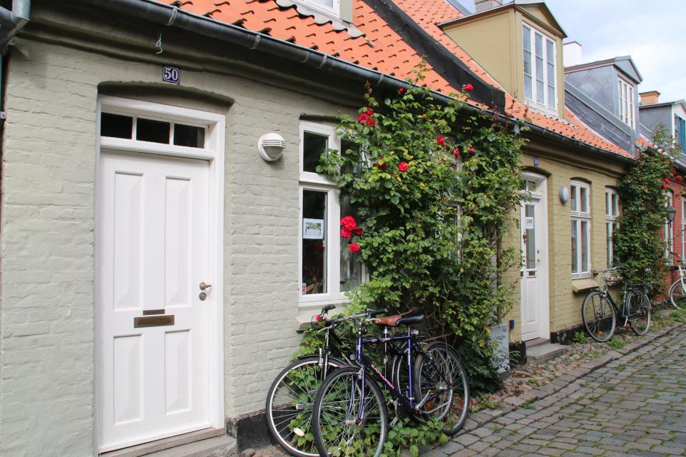 Розы и велосипеды на старой мельничной улочке