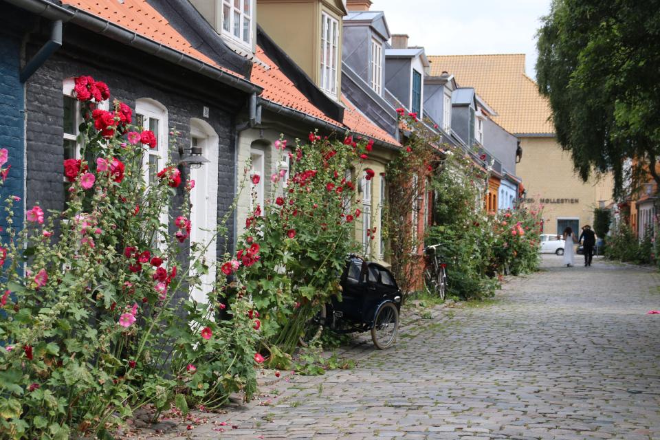 Молодожены на старой мельничной улочке в Орхусе. Фото 25 июл. 2020, Дания