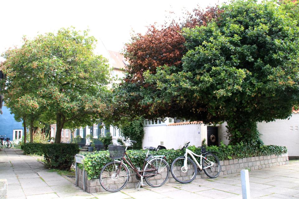 В начале улицы Мёллестиен со стороны бывшей библиотеки и парка Mølleparken