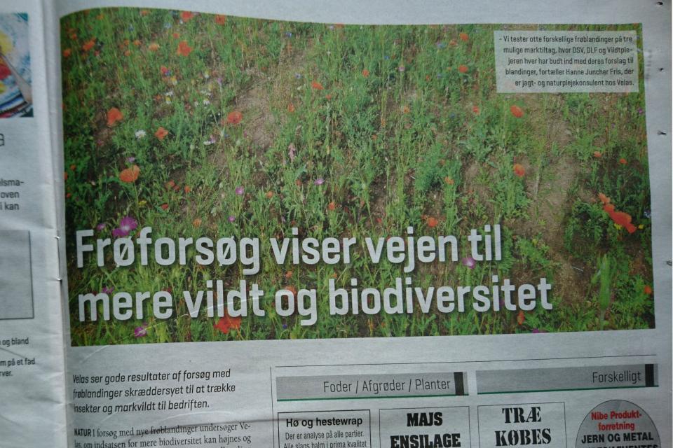 Статья в газете LandrugNord, авг. 2020 про тестирование различных смесей семян